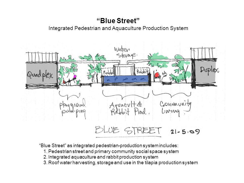 Blue Street Integrated Pedestrian and Aquaculture Production System Blue Street as integrated pedestrian-production system includes: 1.Pedestrian street and primary community social space system 2.Integrated aquaculture and rabbit production system 3.Roof water harvesting, storage and use in the tilapia production system