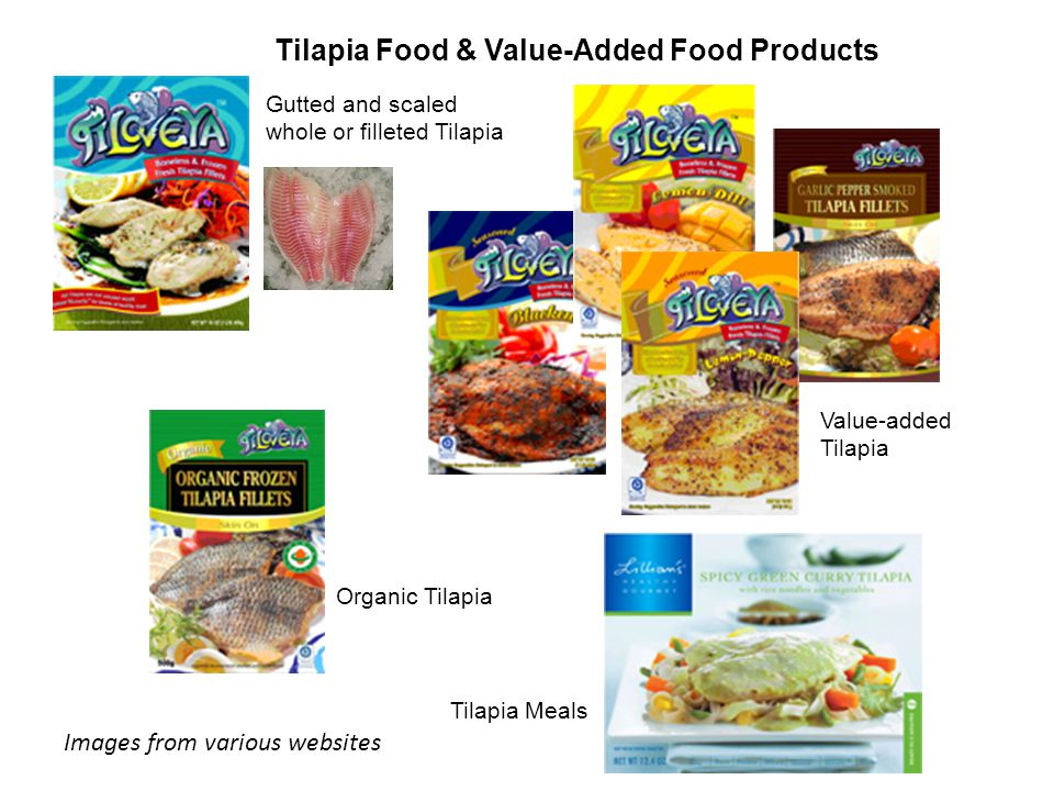 Value-added Tilapia Organic Tilapia Gutted and scaled whole or filleted Tilapia Tilapia Meals Tilapia Food & Value-Added Food Products Images from various websites