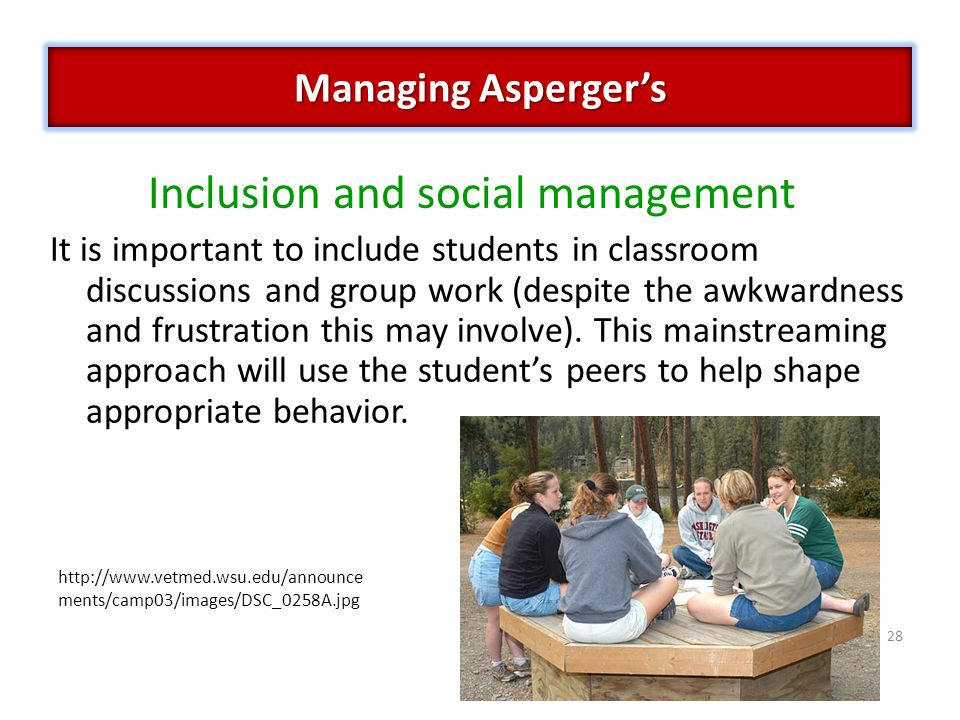 28 Inclusion and social management It is important to include students in classroom discussions and group work (despite the awkwardness and frustration this may involve).