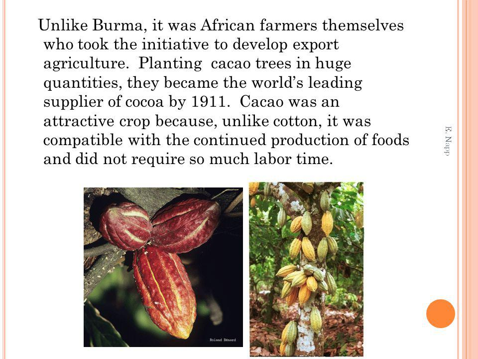 Unlike Burma, it was African farmers themselves who took the initiative to develop export agriculture.