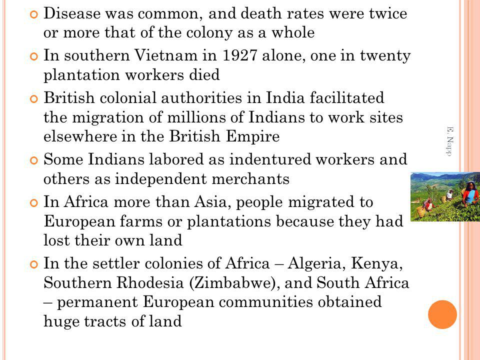 Disease was common, and death rates were twice or more that of the colony as a whole In southern Vietnam in 1927 alone, one in twenty plantation workers died British colonial authorities in India facilitated the migration of millions of Indians to work sites elsewhere in the British Empire Some Indians labored as indentured workers and others as independent merchants In Africa more than Asia, people migrated to European farms or plantations because they had lost their own land In the settler colonies of Africa – Algeria, Kenya, Southern Rhodesia (Zimbabwe), and South Africa – permanent European communities obtained huge tracts of land E.