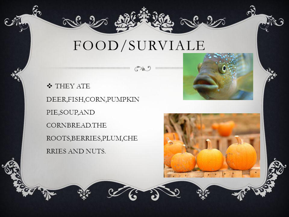 THEY ATE DEER,FISH,CORN,PUMPKIN PIE,SOUP,AND CORNBREAD.THE ROOTS,BERRIES,PLUM,CHE RRIES AND NUTS. FOOD/SURVIALE