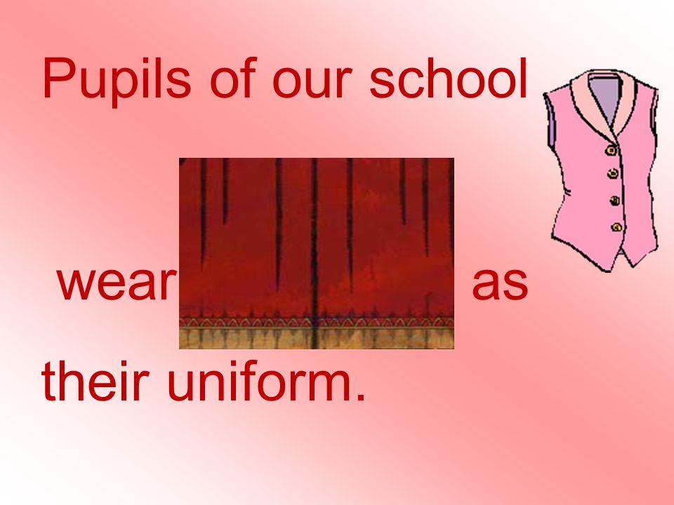 Pupils of our school wear waistcoats as their uniform.