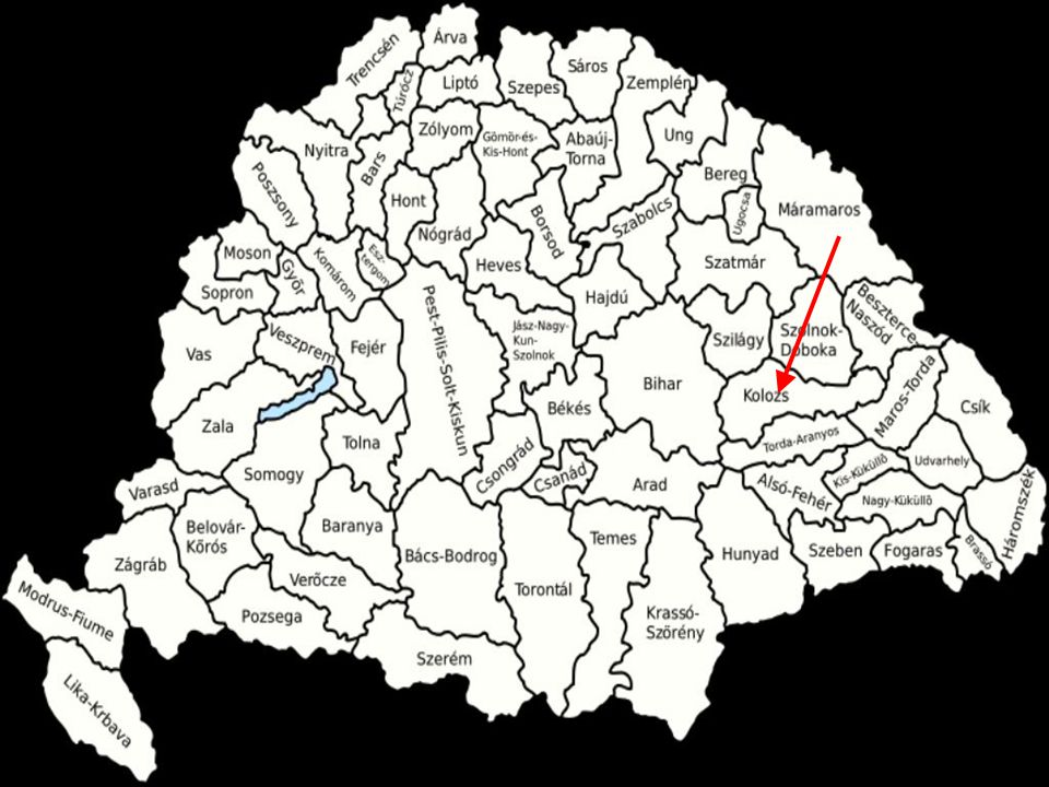 Flower patterns Main color: white Ribbon in the hair