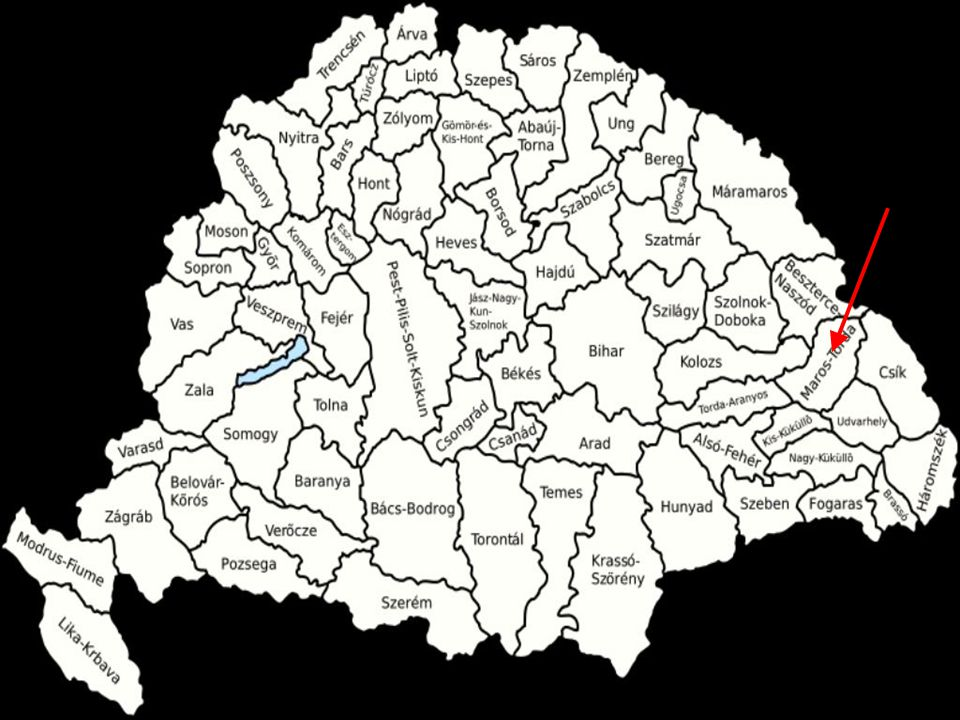 Mezőség No underskirts Different colors