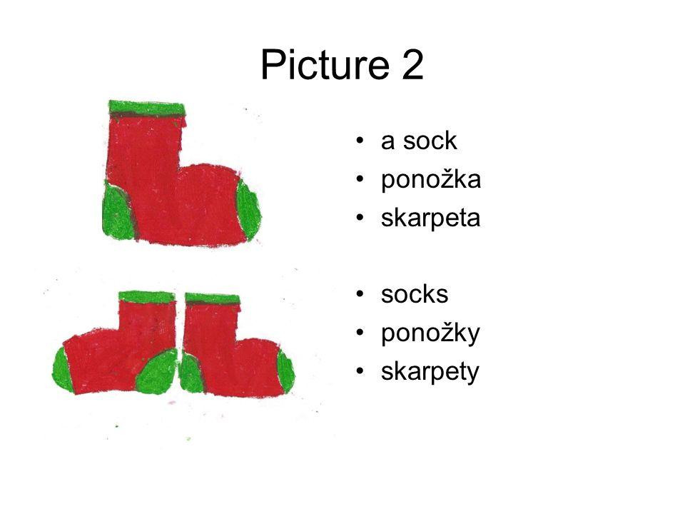 Picture 2 a sock ponožka skarpeta socks ponožky skarpety