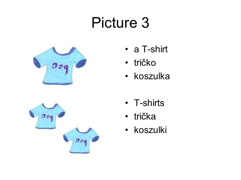 Picture 3 a T-shirt tričko koszulka T-shirts trička koszulki