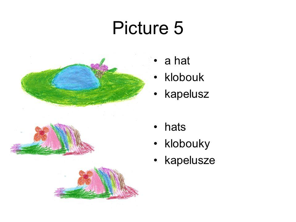 Picture 5 a hat klobouk kapelusz hats klobouky kapelusze