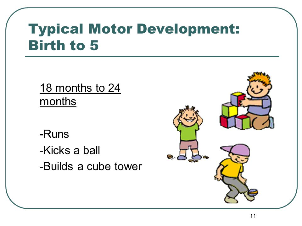 11 Typical Motor Development: Birth to 5 18 months to 24 months -Runs -Kicks a ball -Builds a cube tower