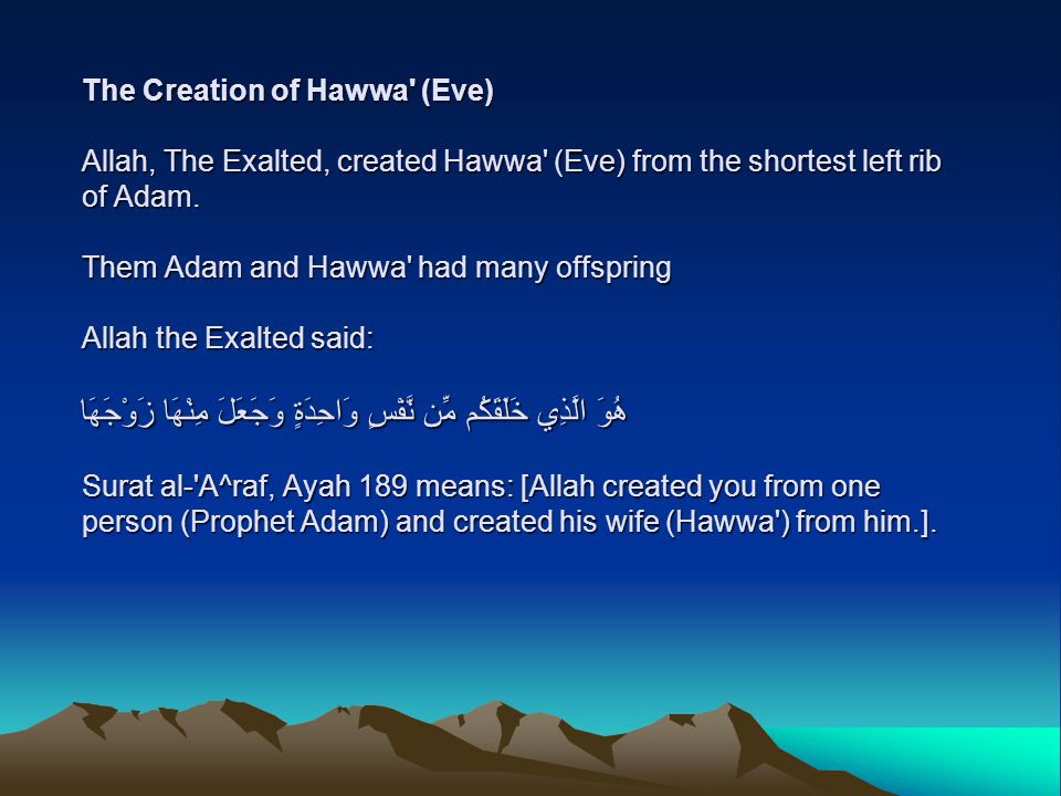 The Creation of Hawwa (Eve) Allah, The Exalted, created Hawwa (Eve) from the shortest left rib of Adam.