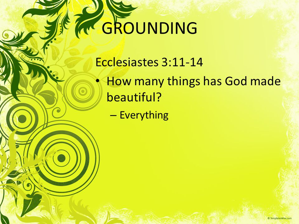 GROUNDING Ecclesiastes 3:11-14 How many things has God made beautiful? – Everything