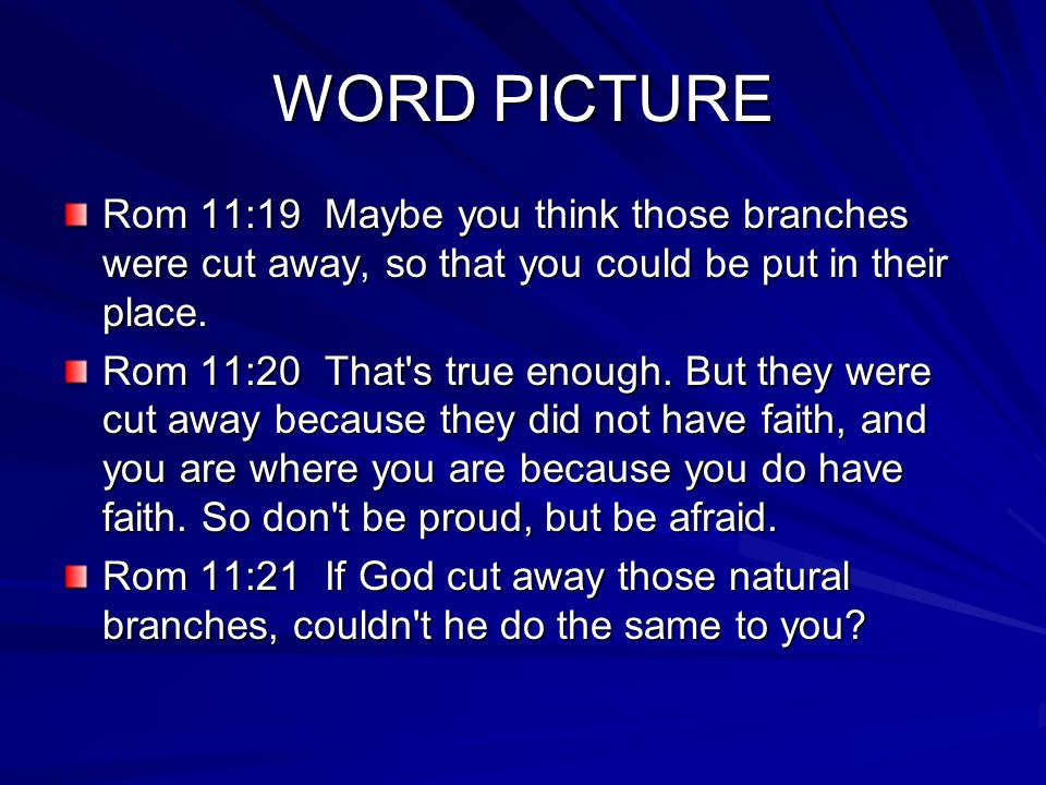 WORD PICTURE Rom 11:19 Maybe you think those branches were cut away, so that you could be put in their place.