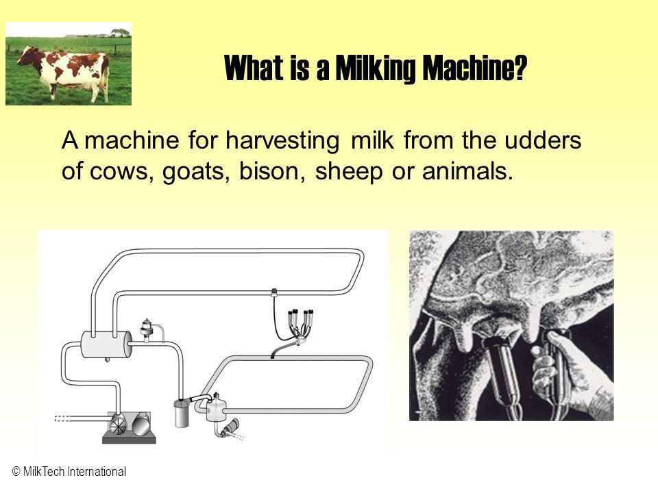 © MilkTech International What is a Milking Machine? A machine for harvesting milk from the udders of cows, goats, bison, sheep or animals.