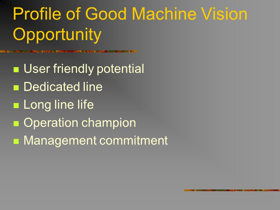 Profile of Good Machine Vision Opportunity User friendly potential Dedicated line Long line life Operation champion Management commitment