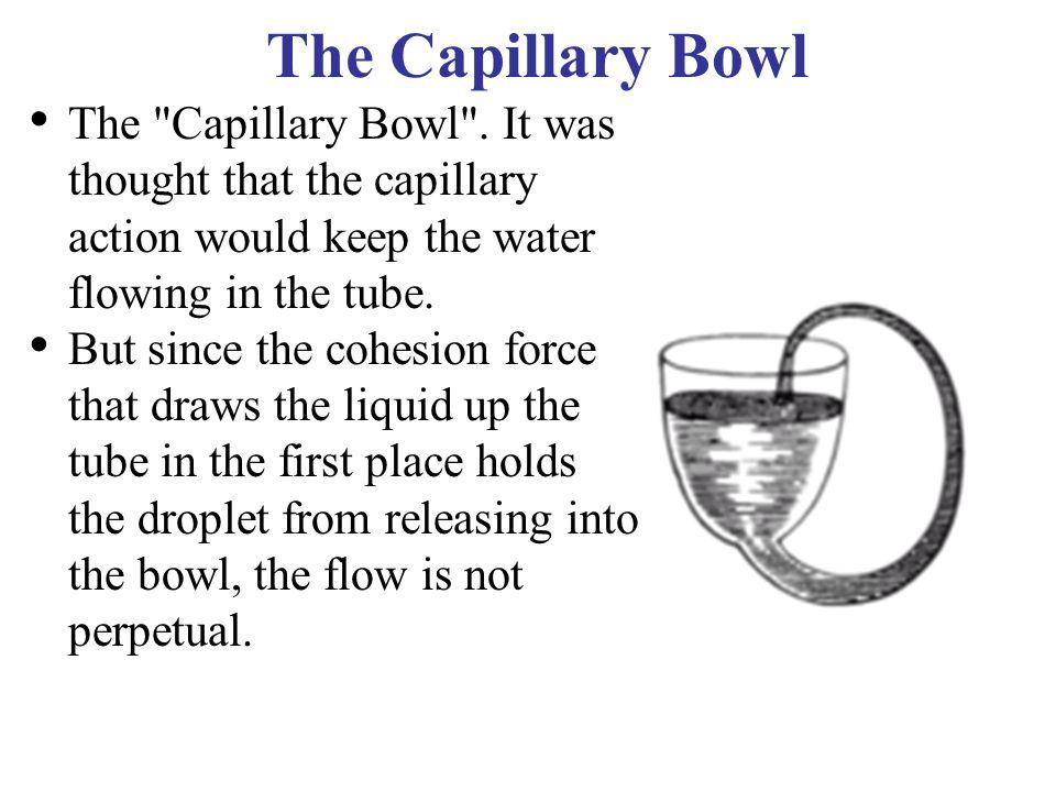 The Capillary Bowl The Capillary Bowl .