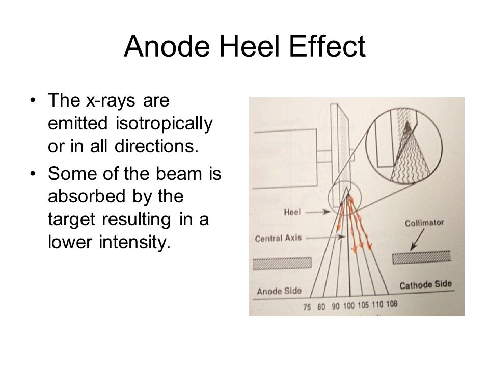 Anode Heel Effect The x-rays are emitted isotropically or in all directions. Some of the beam is absorbed by the target resulting in a lower intensity