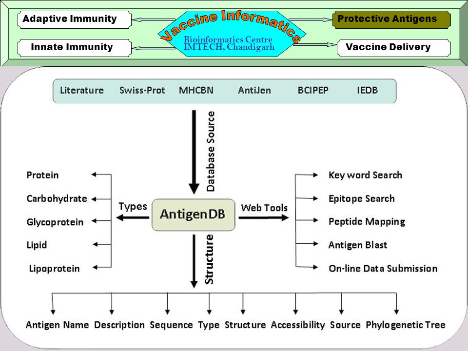 14 Innate ImmunityVaccine Delivery Protective AntigensAdaptive Immunity Bioinformatics Centre IMTECH, Chandigarh PRRDB is a database of pattern recognition receptors and their ligands ~500 Pattern-recognition Receptors 228 ligands (PAMPs) 77 distinct organisms 720 entries