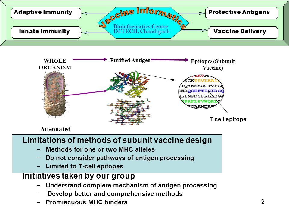 1 Computer-aided Vaccine and Drug Discovery G.P.S.