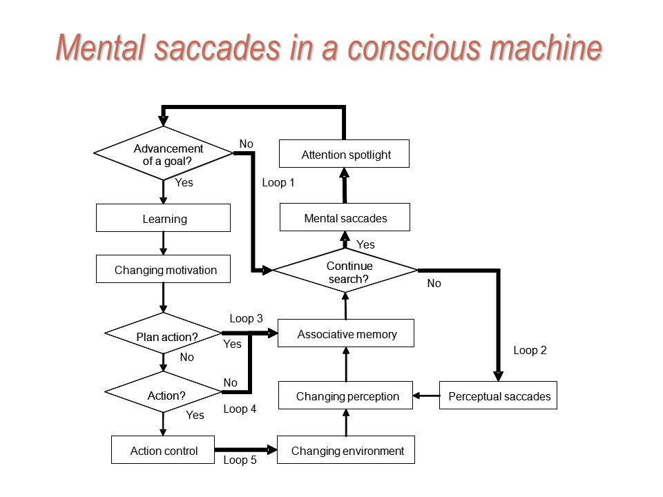 Mental saccades in a conscious machine Perceptual saccadesChanging perception Changing environment Associative memory No Action control Loop 5 Loop 2 Perceptual saccadesChanging perception Changing environment Associative memory No Action control Advancement of a goal.