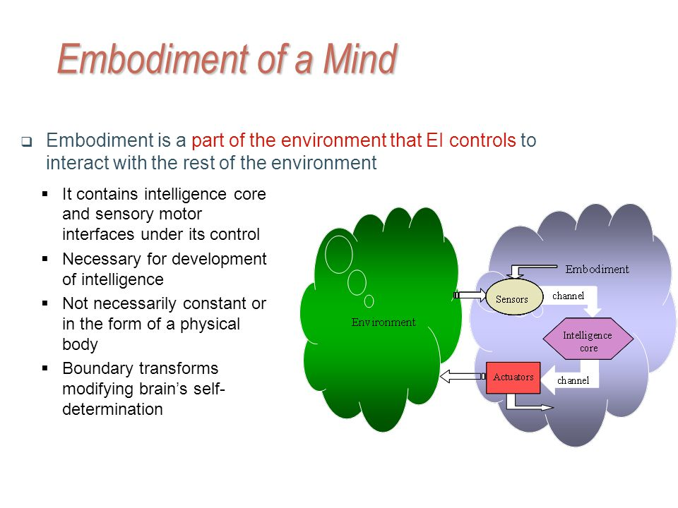 Embodiment of a Mind Embodiment is a part of the environment that EI controls to interact with the rest of the environment It contains intelligence core and sensory motor interfaces under its control Necessary for development of intelligence Not necessarily constant or in the form of a physical body Boundary transforms modifying brains self- determination