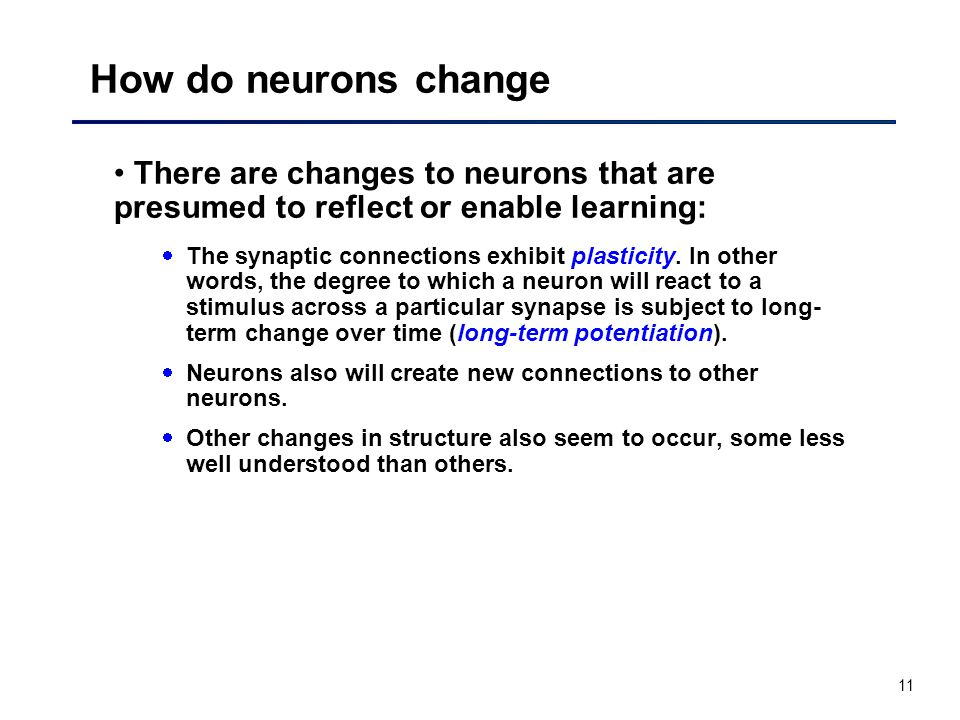 11 How do neurons change There are changes to neurons that are presumed to reflect or enable learning: The synaptic connections exhibit plasticity.