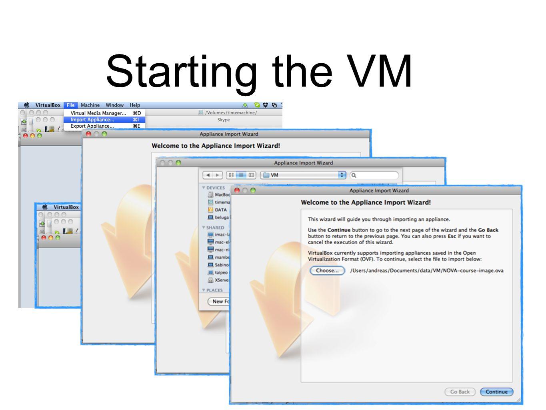 4 Starting the VM