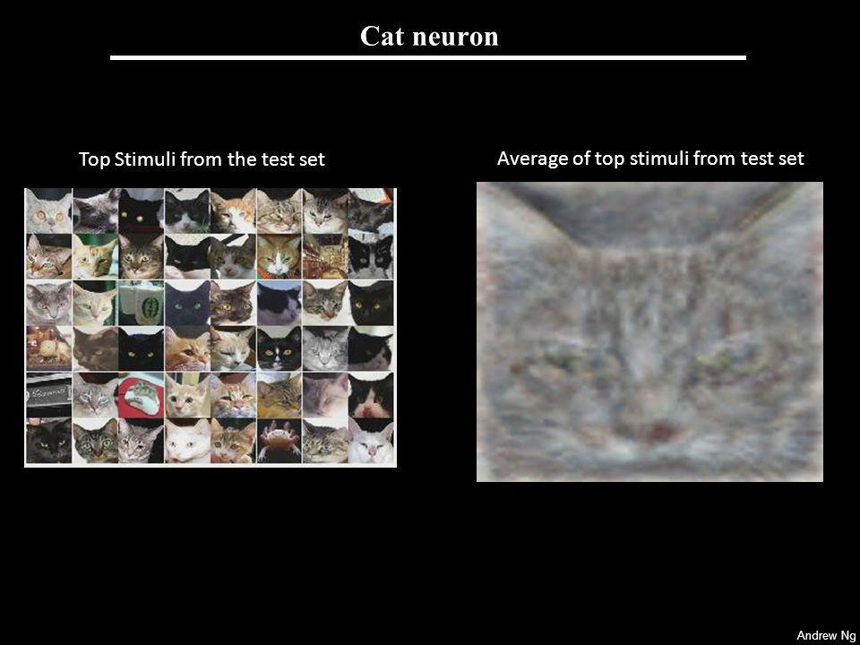 Andrew Ng Cat neuron [Raina, Madhavan and Ng, 2008] Top Stimuli from the test set Average of top stimuli from test set