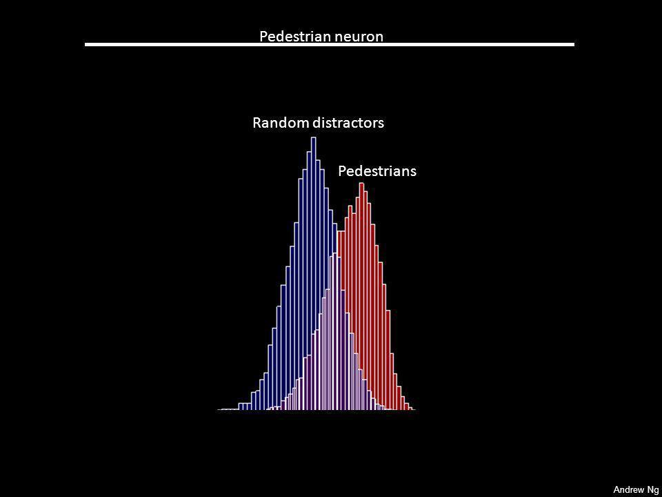Andrew Ng Pedestrian neuron Random distractors Pedestrians