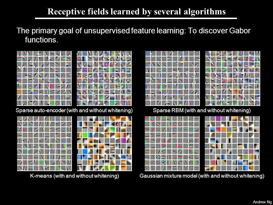 Andrew Ng Receptive fields learned by several algorithms The primary goal of unsupervised feature learning: To discover Gabor functions.