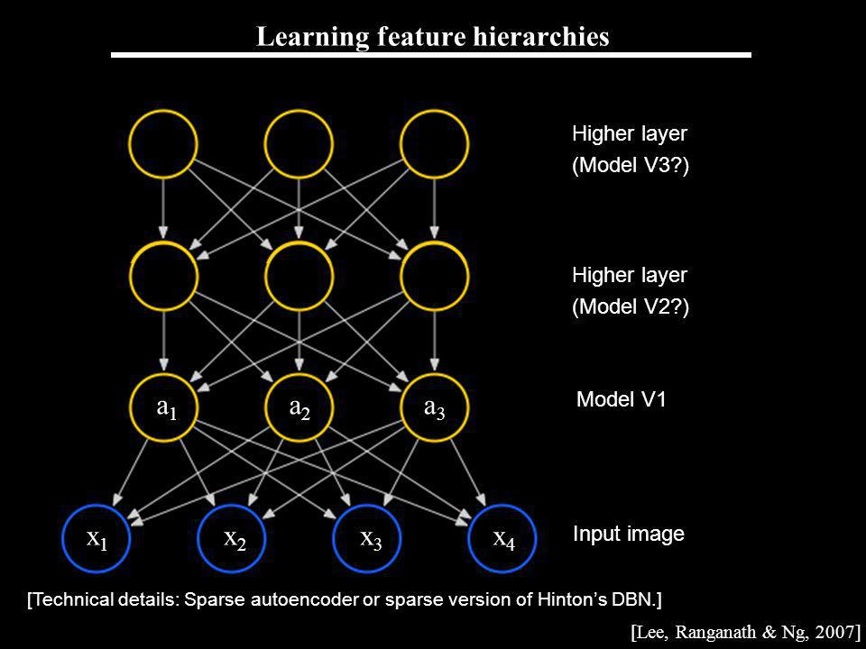 Andrew Ng Learning feature hierarchies Input image Model V1 Higher layer (Model V2?) Higher layer (Model V3?) [Lee, Ranganath & Ng, 2007] [Technical details: Sparse autoencoder or sparse version of Hintons DBN.] x1x1 x2x2 x3x3 x4x4 a3a3 a2a2 a1a1