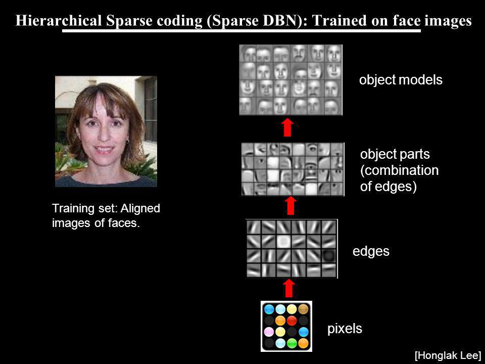 Andrew Ng Hierarchical Sparse coding (Sparse DBN): Trained on face images pixels edges object parts (combination of edges) object models [Honglak Lee] Training set: Aligned images of faces.