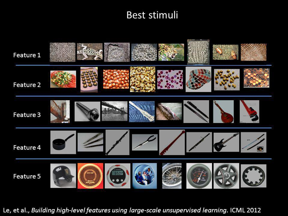 Best stimuli Pooling Size = 5 Number of maps = 8 Image Size = 200 Number of output channels = 8 Number of input channels = 3 One layer RF size = 18 Input to another layer above (image with 8 channels) W H LCN Size = 5 Feature 1 Feature 2 Feature 3 Feature 4 Feature 5 Le, et al., Building high-level features using large-scale unsupervised learning.