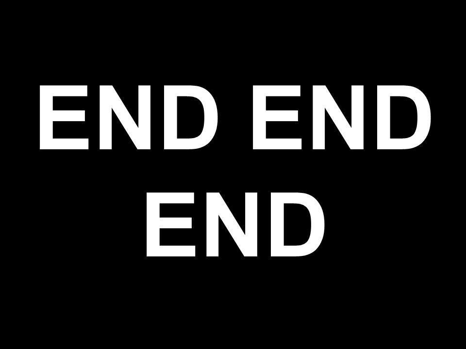 Andrew Ng END END END