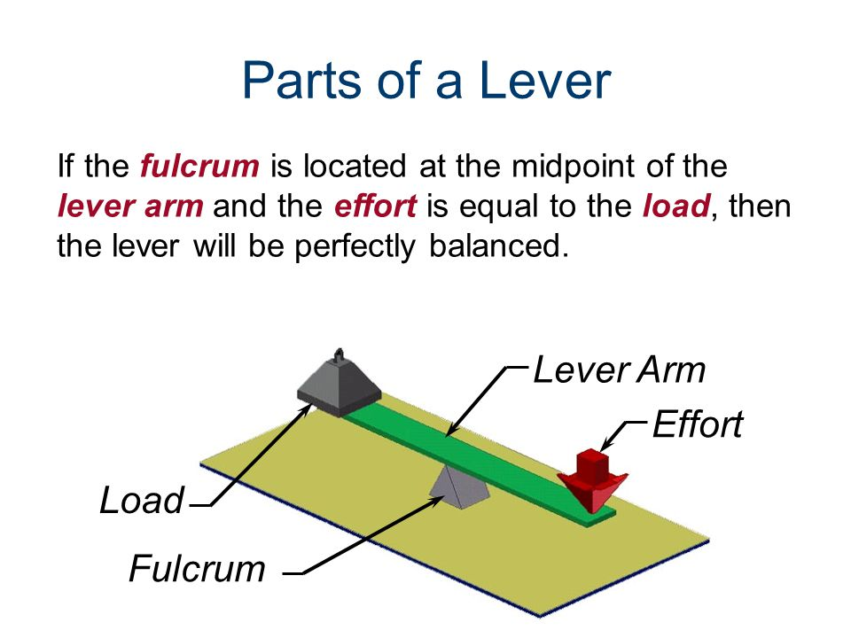 Effort Load Fulcrum If the fulcrum is located at the midpoint of the lever arm and the effort is equal to the load, then the lever will be perfectly b