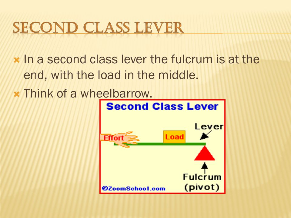 In a first class lever the fulcrum is in the middle and the load and effort is on either side.