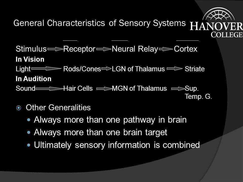 Physical Stimulus Accessory Structures Receptors (Transduction) Neural Processing Perception/ Cognition Behavior Light, Sound, Pressure, Chemical substances, Temperature, etc.