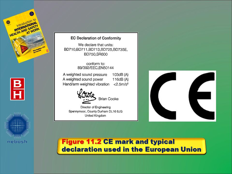 Figure 11.2 CE mark and typical declaration used in the European Union