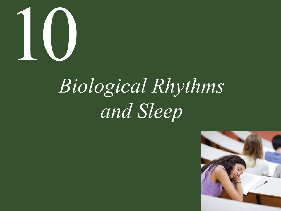 10 Biological Rhythms and Sleep