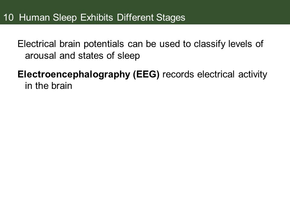 10 Human Sleep Exhibits Different Stages Electrical brain potentials can be used to classify levels of arousal and states of sleep Electroencephalography (EEG) records electrical activity in the brain