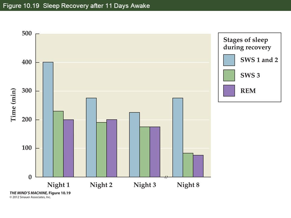 Figure 10.19 Sleep Recovery after 11 Days Awake
