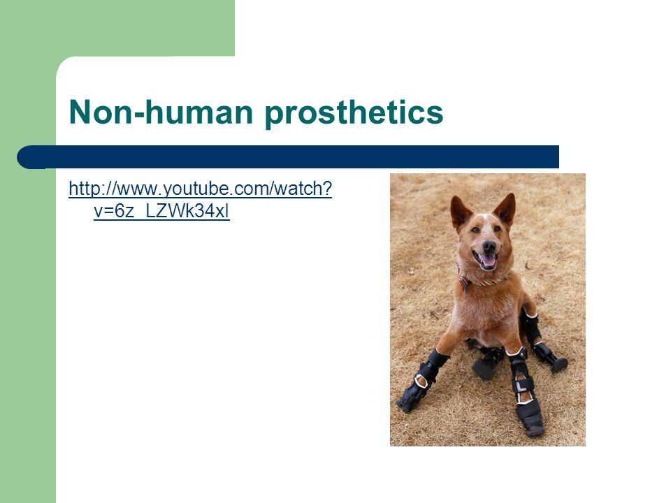 Non-human prosthetics http://www.youtube.com/watch? v=6z_LZWk34xI