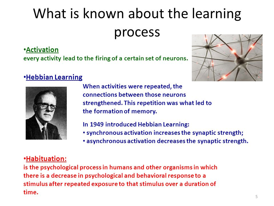 What is known about the learning process Activation every activity lead to the firing of a certain set of neurons. Habituation: is the psychological p