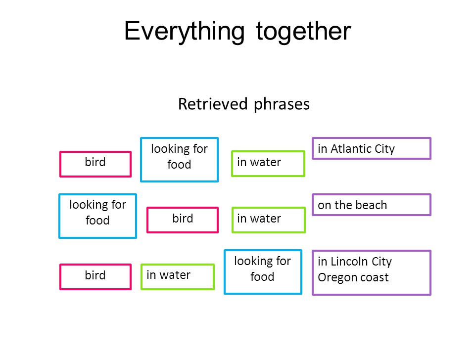 Everything together Retrieved phrases bird in water on the beach bird in water in Lincoln City Oregon coast bird in water in Atlantic City looking for food