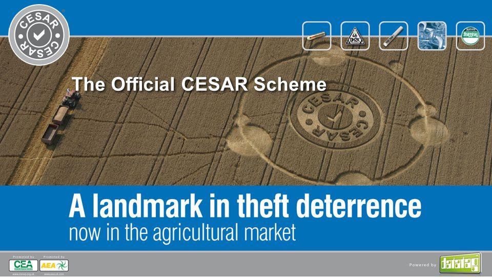 The Official CESAR Scheme