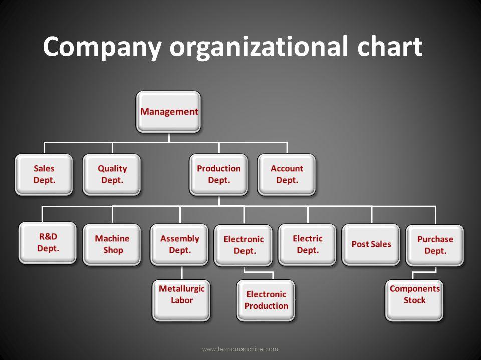 Company organizational chart www.termomacchine.com