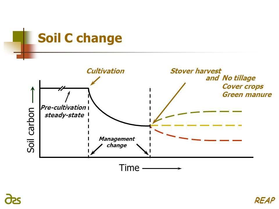 and Stover harvest Soil C change Soil carbon Time Management change Cultivation Pre-cultivation steady-state No tillage Cover crops Green manure REAP