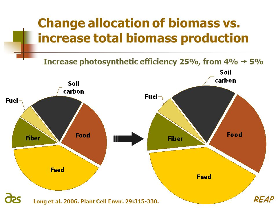 Change allocation of biomass vs.