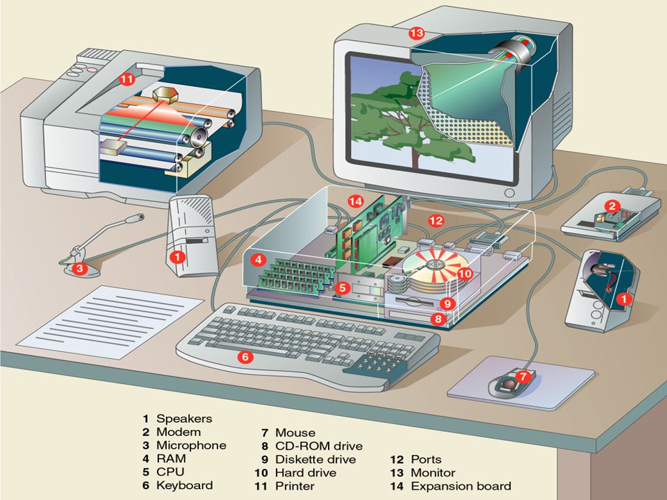 Software – also called programs – consists of organized sets of instructions for controlling the computer.