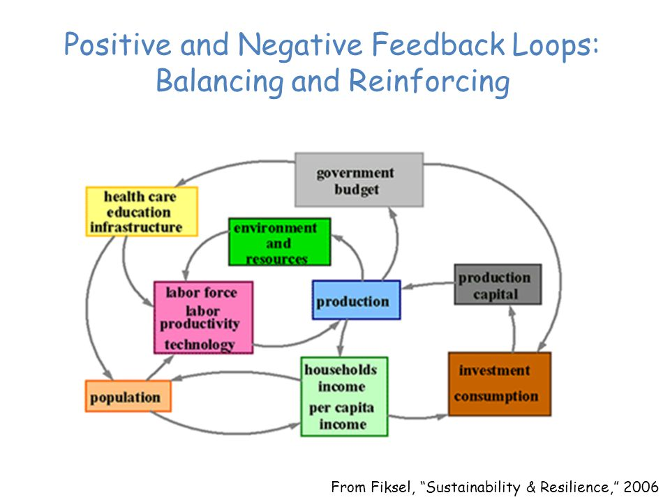 From Fiksel, Sustainability & Resilience, 2006 Positive and Negative Feedback Loops: Balancing and Reinforcing