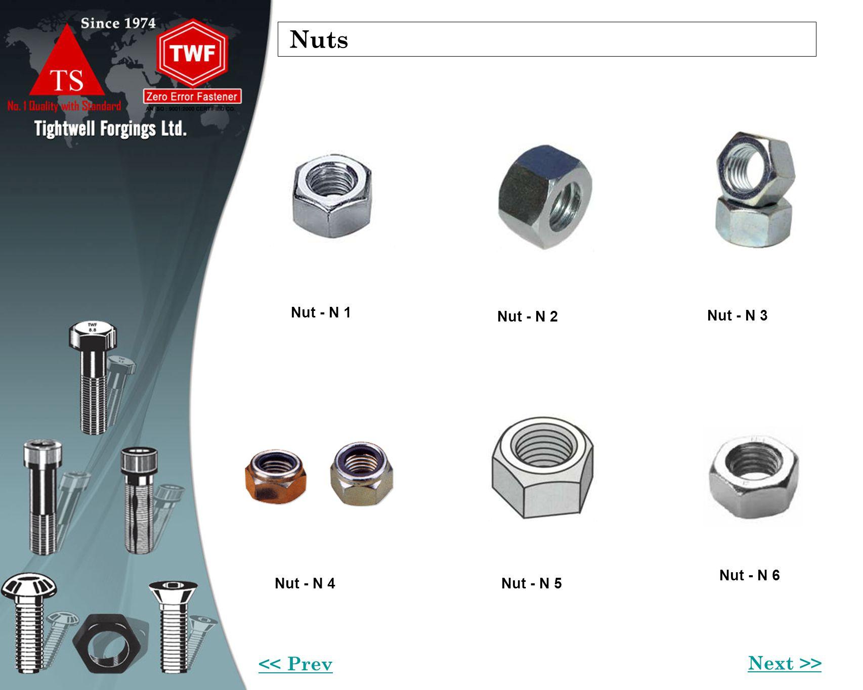 Nuts Nut - N 1 Nut - N 2 Nut - N 3 Nut - N 6 Nut - N 5Nut - N 4 Next >> << Prev